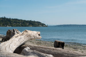 Discovery Park Beach, Seattle